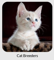 cat breeders