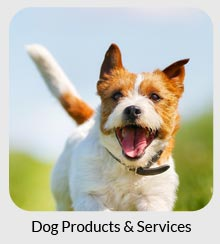 dog products and services