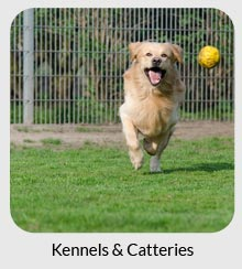 kennels and catteries