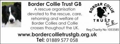 Border Collie Trust GB