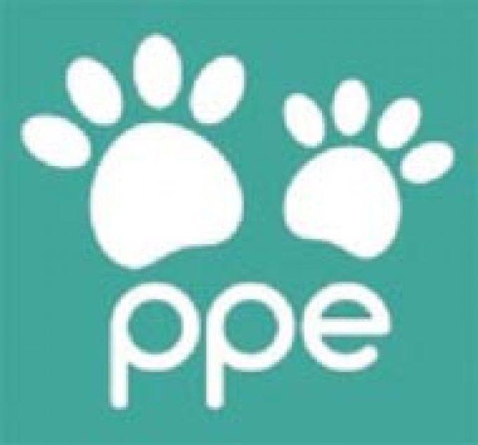 PP Enhancements Ltd