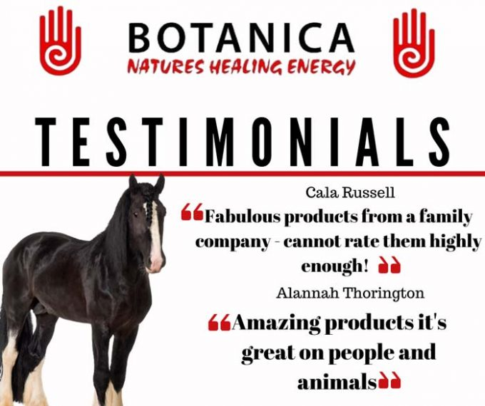 Botanica International Ltd