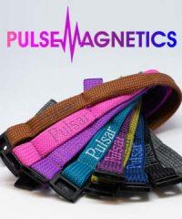 Pulse Magnetics